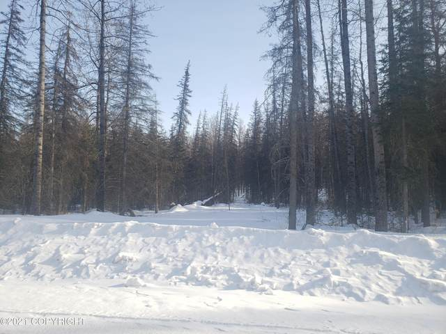 B032 E Big Rock Drive, Wasilla, AK 99654 (MLS #21-5156) :: RMG Real Estate Network | Keller Williams Realty Alaska Group
