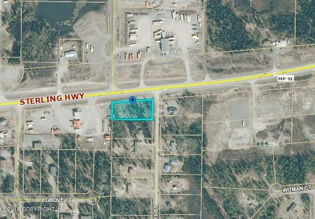 41397 Sterling Highway, Soldotna, AK 99669 (MLS #21-5157) :: Wolf Real Estate Professionals