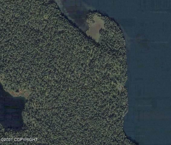 L50 Hewitt-Whiskey Lake, Remote, AK 99000 (MLS #21-5180) :: Wolf Real Estate Professionals