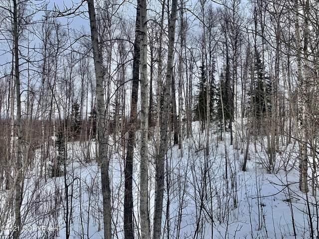 7080 W Sandvik Drive, Wasilla, AK 99623 (MLS #21-5212) :: RMG Real Estate Network | Keller Williams Realty Alaska Group
