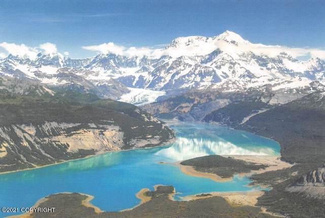 L2 Icy Bay, Yakutat, AK 99689 (MLS #21-5304) :: Team Dimmick