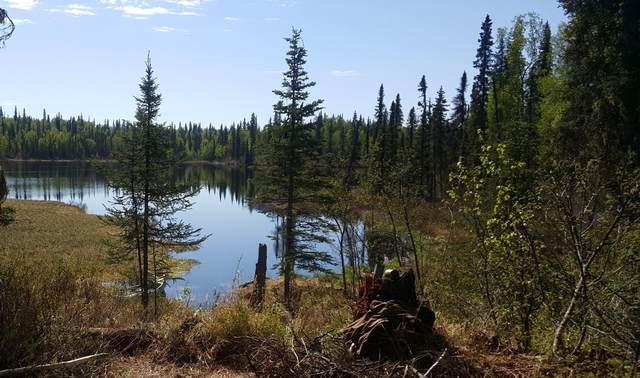 000 No Road Asls 81-130, Trapper Creek, AK 99683 (MLS #21-5326) :: Team Dimmick