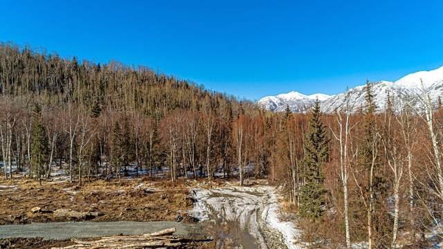 3001 Butte Road, Palmer, AK 99645 (MLS #21-5384) :: The Adrian Jaime Group   Keller Williams Realty Alaska