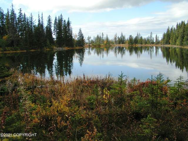 000 Lakefront Trail Access, Anchor Point, AK 99556 (MLS #21-5411) :: Daves Alaska Homes