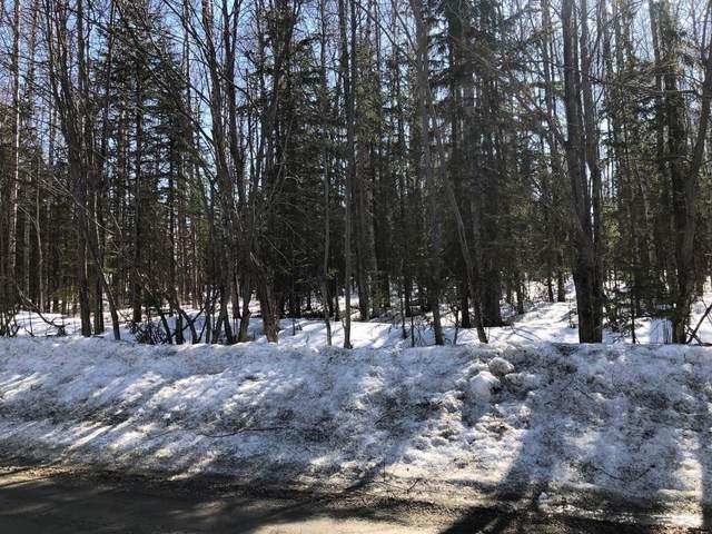 14068 W Halston Avenue, Big Lake, AK 99652 (MLS #21-5525) :: Daves Alaska Homes