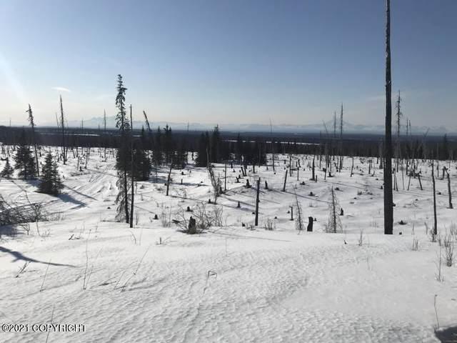 L1 B1 Garcia Subdivision, Ninilchik, AK 99639 (MLS #21-5581) :: RMG Real Estate Network | Keller Williams Realty Alaska Group
