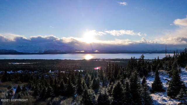 38425 Fritz Creek Valley Drive, Homer, AK 99603 (MLS #21-560) :: Wolf Real Estate Professionals