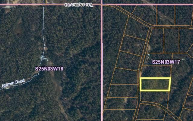 L2 B17 No Road, Talkeetna, AK 99676 (MLS #21-5792) :: Wolf Real Estate Professionals