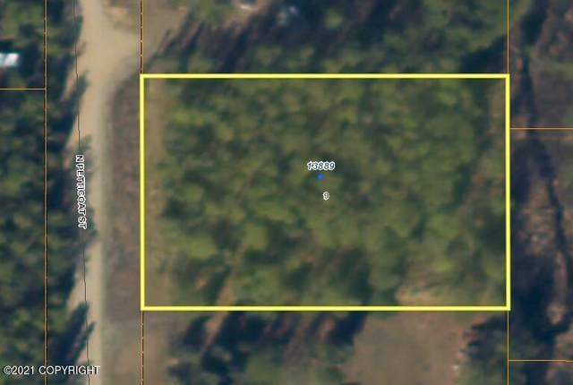 13889 Petticoat Street, Willow, AK 99688 (MLS #21-5799) :: Wolf Real Estate Professionals