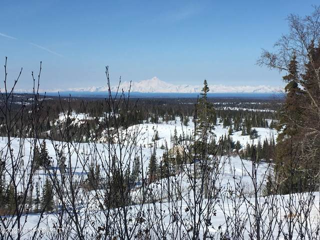 000 Towe, Ninilchik, AK 99639 (MLS #21-5892) :: Daves Alaska Homes