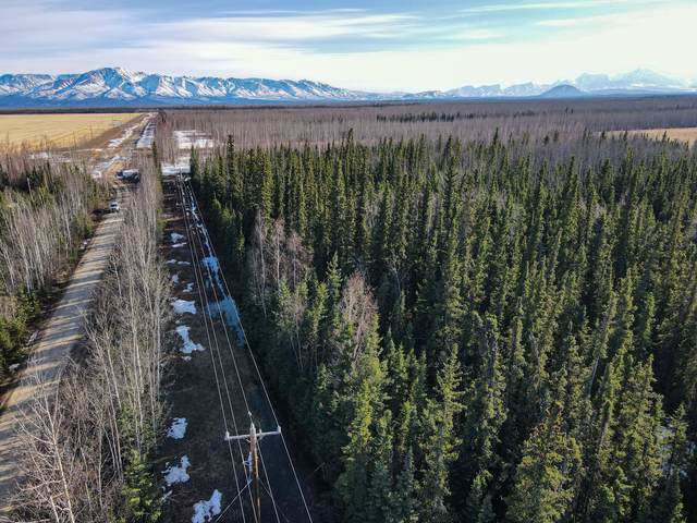 T2 Agriculture Road, Delta Junction, AK 99737 (MLS #21-6025) :: Powered By Lymburner Realty