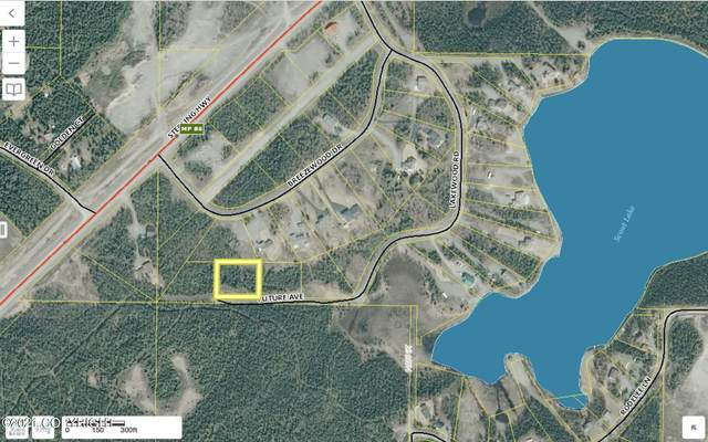 37050 Future Avenue, Sterling, AK 99672 (MLS #21-6143) :: Wolf Real Estate Professionals