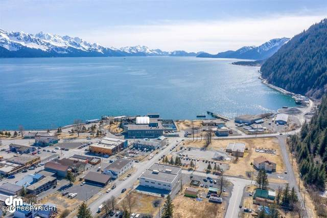 201 Third Avenue, Seward, AK 99664 (MLS #21-6224) :: Wolf Real Estate Professionals