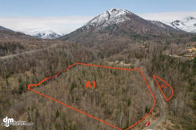 TR A1 & A2 Sleepy Hollow, Chugiak, AK 99567 (MLS #21-6241) :: Wolf Real Estate Professionals