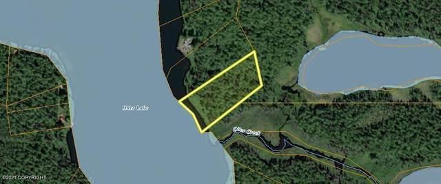 Tr B No Road, Remote, AK 99000 (MLS #21-6336) :: Wolf Real Estate Professionals