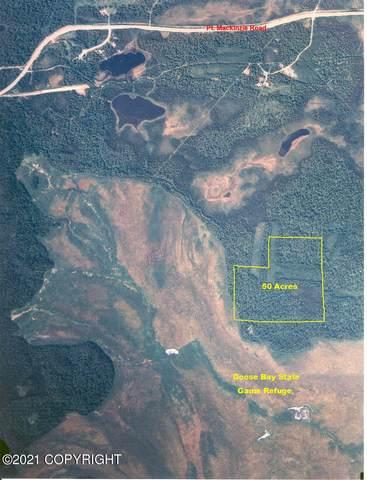 D002 No Road Trail, Wasilla, AK 99654 (MLS #21-6365) :: Wolf Real Estate Professionals