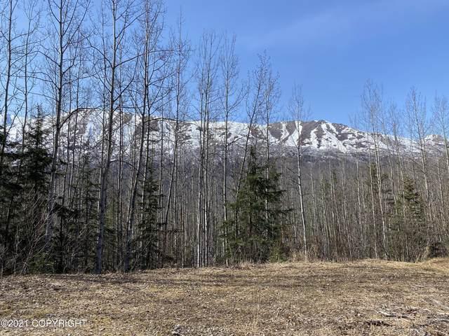 27141 Roop Road, Eagle River, AK 99577 (MLS #21-6378) :: Daves Alaska Homes