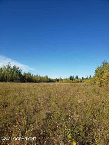 000 No Road, Healy, AK 99743 (MLS #21-6401) :: Wolf Real Estate Professionals
