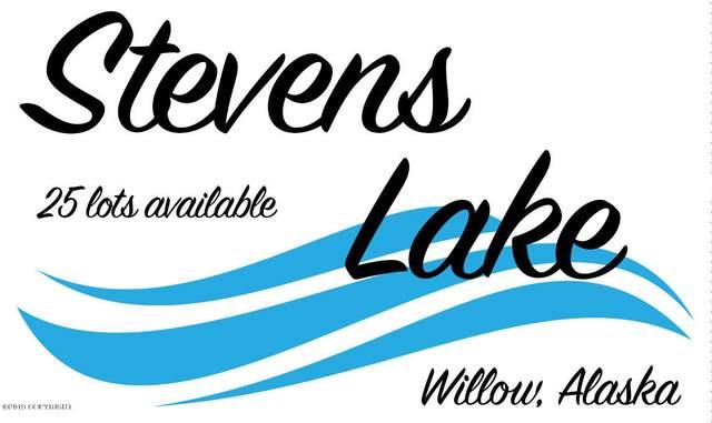 L12 B4 Tuxedo, Willow, AK 99688 (MLS #21-6425) :: RMG Real Estate Network | Keller Williams Realty Alaska Group
