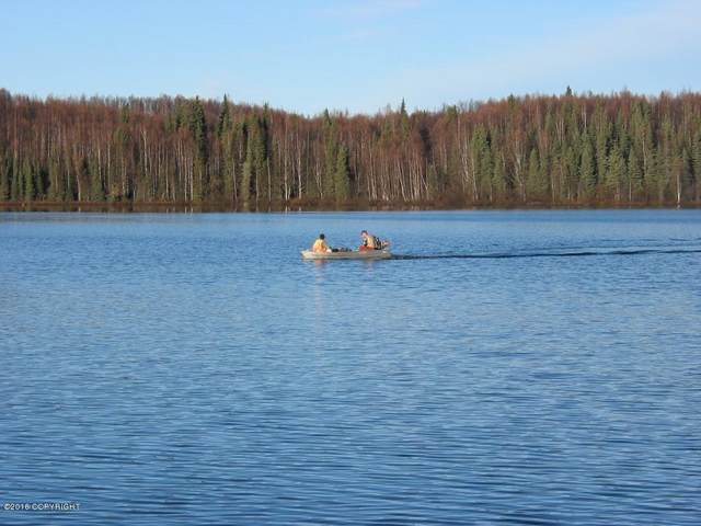 13406 N Prism Drive, Willow, AK 99688 (MLS #21-6426) :: RMG Real Estate Network | Keller Williams Realty Alaska Group