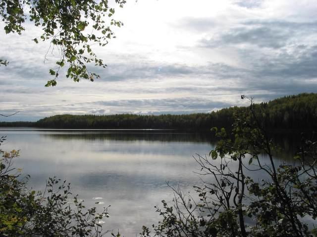 13276 N Prism Drive, Willow, AK 99688 (MLS #21-6427) :: RMG Real Estate Network | Keller Williams Realty Alaska Group
