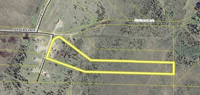 26412 Mocha Lane, Ninilchik, AK  (MLS #21-643) :: Wolf Real Estate Professionals