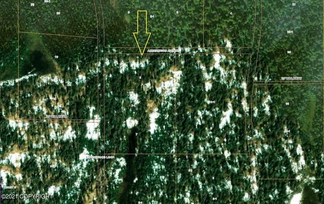 Lt 7-1 B4 Alexander Creek (No Road), Remote, AK 99000 (MLS #21-6482) :: Daves Alaska Homes