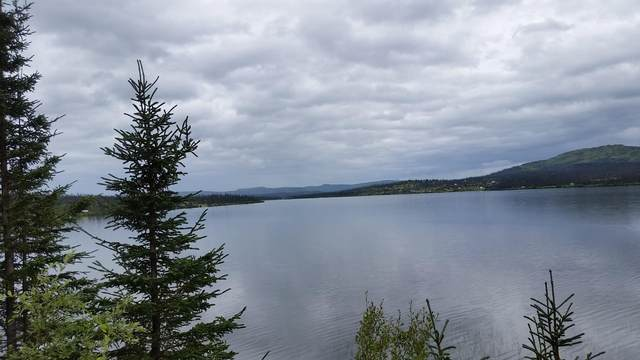 Tr B2 Caribou Lake, Homer, AK 99603 (MLS #21-6591) :: Daves Alaska Homes