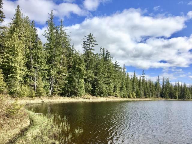 L10B4 Setter Lake Road, Thorne Bay, AK 99919 (MLS #21-6730) :: Daves Alaska Homes