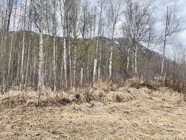 26550 Kerry Loop, Chugiak, AK 99567 (MLS #21-6739) :: Wolf Real Estate Professionals