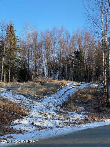 5904 Sitze Road, Wasilla, AK 99623 (MLS #21-6961) :: Wolf Real Estate Professionals