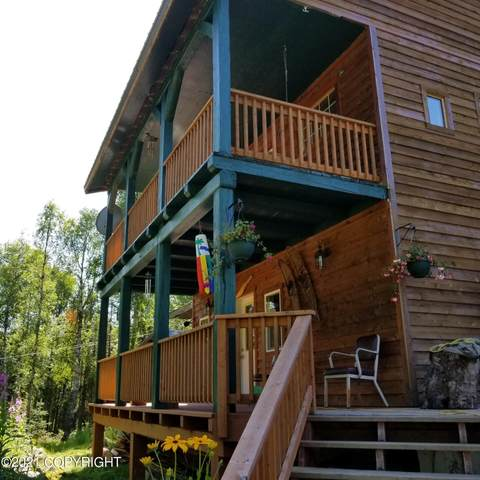 16614 E Barge Drive, Talkeetna, AK 99676 (MLS #21-6988) :: Wolf Real Estate Professionals