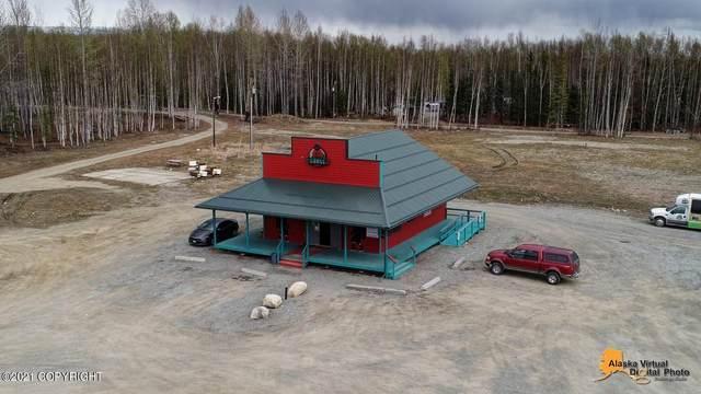 15231 W Parks Highway, Houston, AK 99652 (MLS #21-7096) :: Daves Alaska Homes