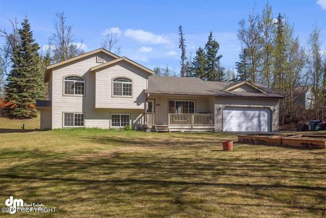 8725 E Central Parkway, Palmer, AK 99645 (MLS #21-7133) :: Wolf Real Estate Professionals