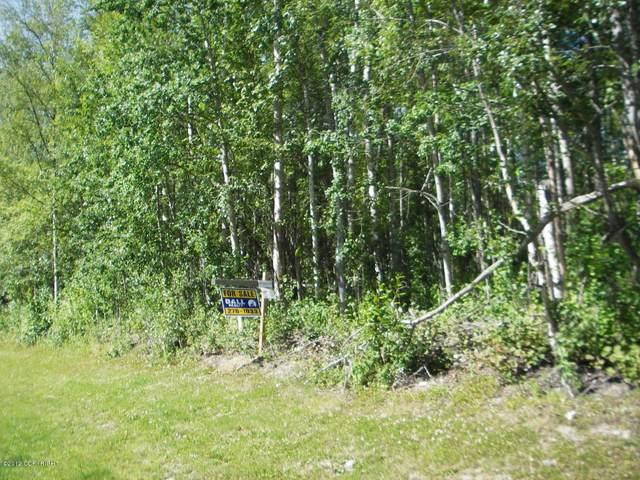 6611 W Hemmer Drive, Wasilla, AK 99654 (MLS #21-726) :: Wolf Real Estate Professionals