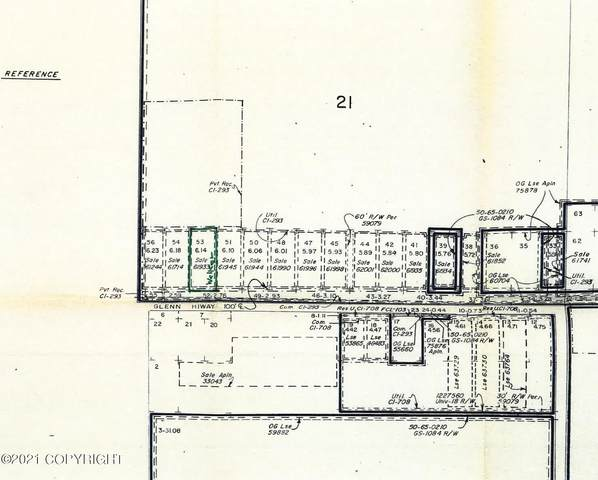 L53 Glenn Highway, Glennallen, AK 00000 (MLS #21-731) :: Wolf Real Estate Professionals