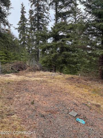 34831 Coastie Circle, Anchor Point, AK 99556 (MLS #21-7394) :: Wolf Real Estate Professionals