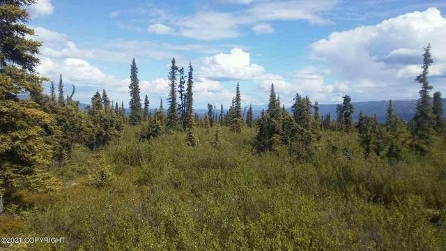 TR 14 Timberwolf Road, Remote, AK 99000 (MLS #21-7417) :: Wolf Real Estate Professionals