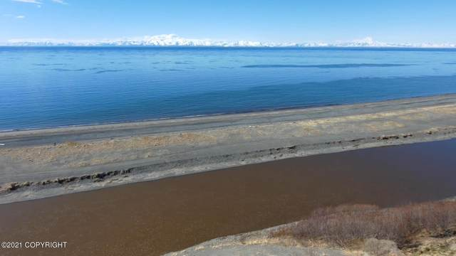 35655 Anchor River Air Park Lane, Anchor Point, AK 99556 (MLS #21-7450) :: Wolf Real Estate Professionals