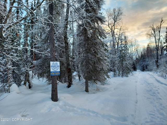 24167 S Homestead Road, Trapper Creek, AK 99683 (MLS #21-748) :: Wolf Real Estate Professionals