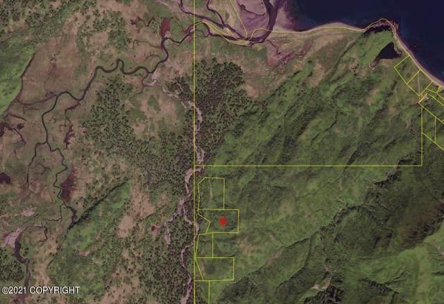 NHN Ugak Bay, Kodiak, AK 99615 (MLS #21-7598) :: Wolf Real Estate Professionals