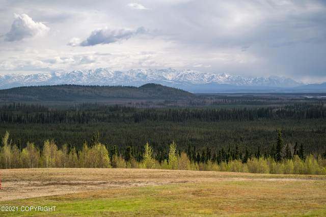 7229 Dehalden Lane, Salcha, AK 99714 (MLS #21-7624) :: Berkshire Hathaway Home Services Alaska Realty Palmer Office