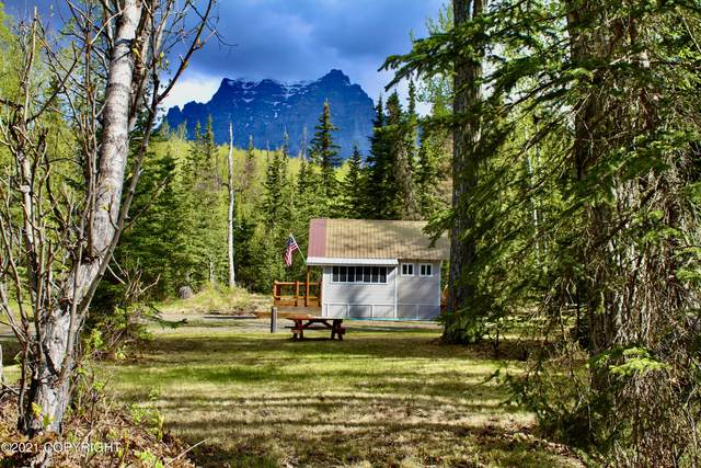 18910 N Fish Lake Road, Chickaloon, AK 99674 (MLS #21-7758) :: Wolf Real Estate Professionals