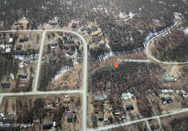 3161 W Wintergreen Drive, Wasilla, AK 99654 (MLS #21-783) :: Wolf Real Estate Professionals