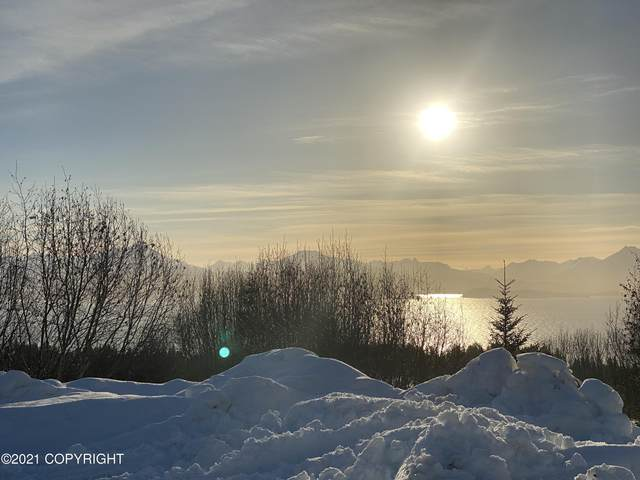 288 Tulin Terrace Boulevard, Homer, AK 99603 (MLS #21-787) :: Alaska Realty Experts