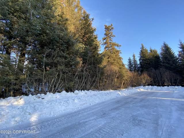 500 Paintbrush Court, Homer, AK 99603 (MLS #21-788) :: Alaska Realty Experts