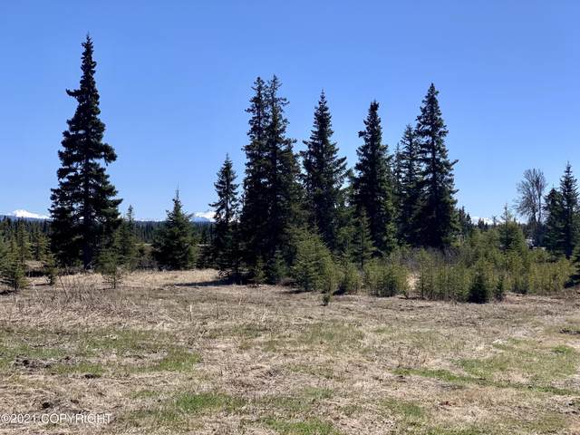 33071 Conifer Circle, Anchor Point, AK 99556 (MLS #21-8062) :: Wolf Real Estate Professionals