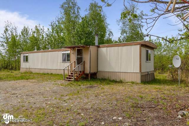 2090 S Owlhaven Drive, Houston, AK 99652 (MLS #21-8192) :: Daves Alaska Homes