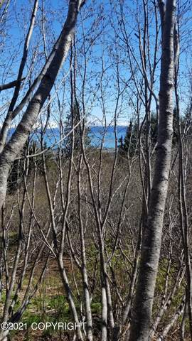 TR 2 Cottonwood Lane, Homer, AK 99603 (MLS #21-8207) :: Berkshire Hathaway Home Services Alaska Realty Palmer Office