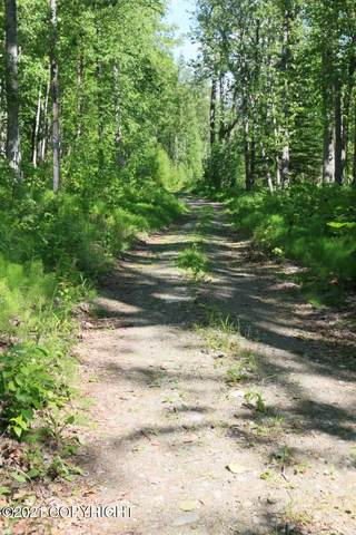 13630 E Kings River Drive, Sutton, AK 99674 (MLS #21-852) :: Wolf Real Estate Professionals